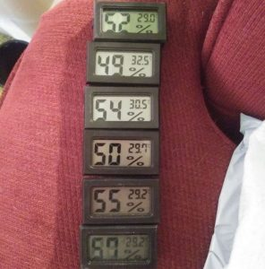 bearded dragon thermometer