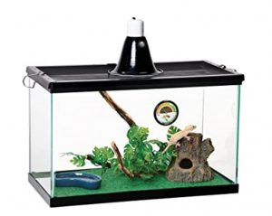 best thermometer for reptiles