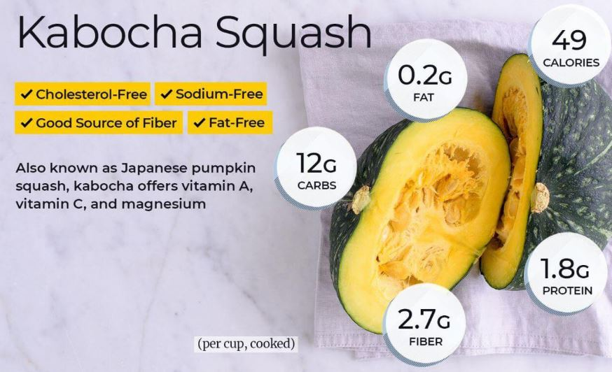 Can Bearded Dragons Eat Squash